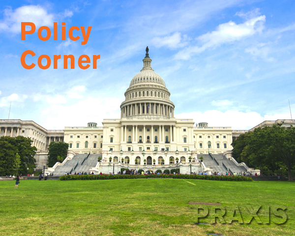 Policy Corner