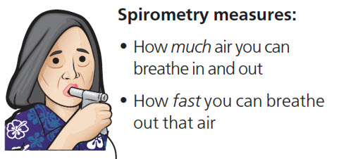 What Spirometry Measures